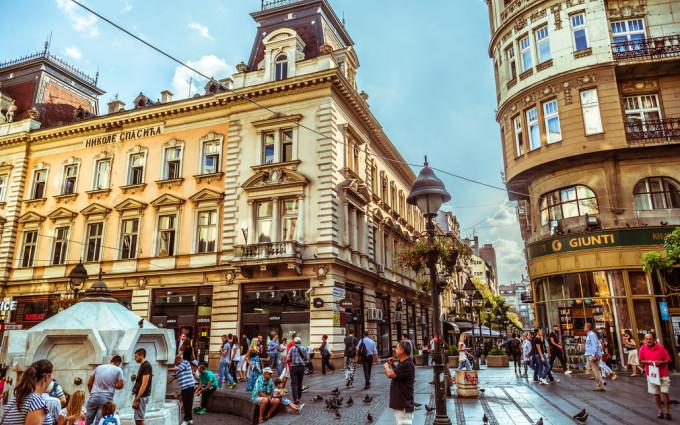 Beogradski šarm, zlatiborska tradicija